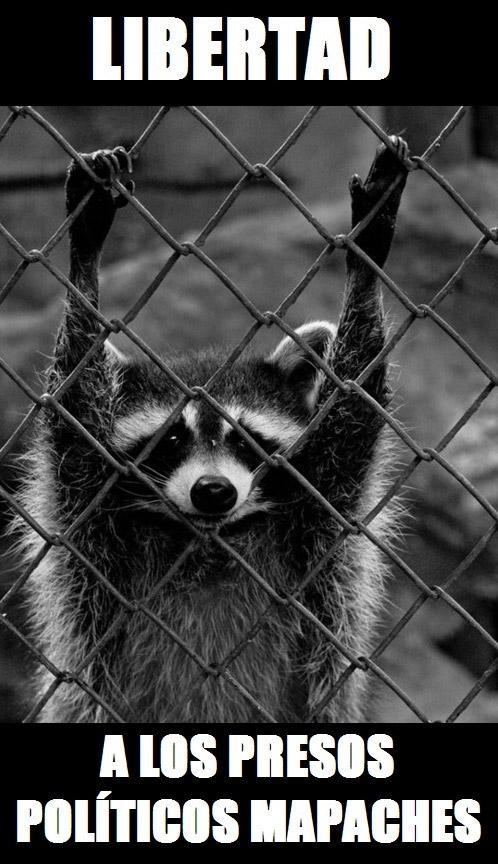 Libertad a los presos políticos mapaches