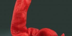 Serpiente de pimiento rojo
