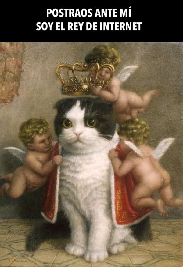 Soy el Rey de Internet