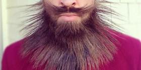 Barba multiusos