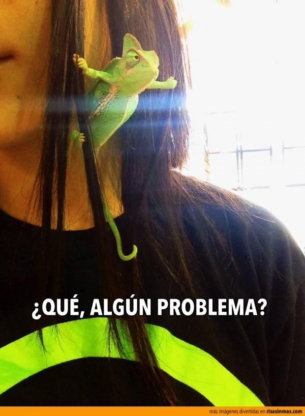 ¿Qué, algún problema?