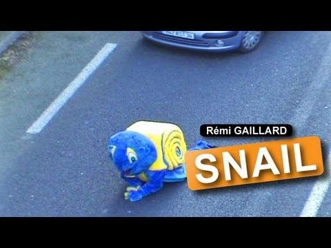 El caracol que detiene el tráfico de Rémi Gaillard