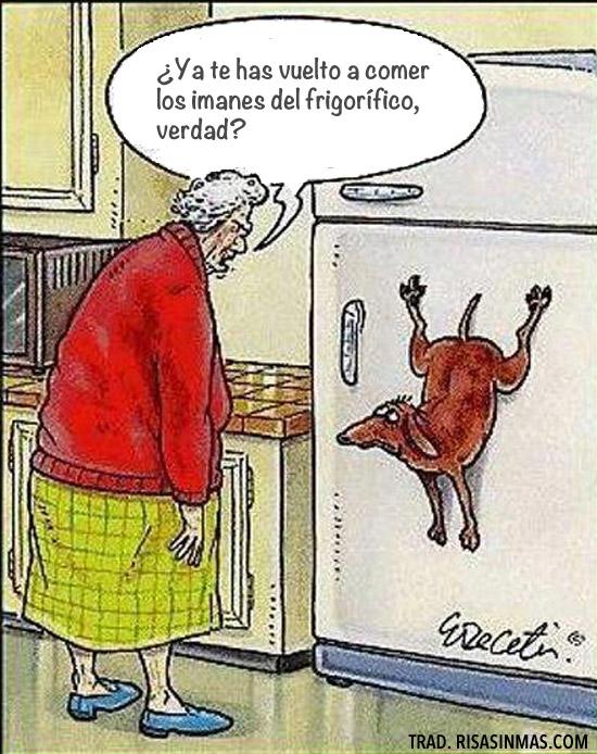 Te has vuelto a comer los imanes del frigorífico