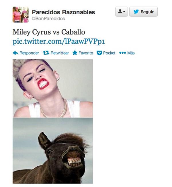 Parecidos razonables: Miley Cyrus y Caballo