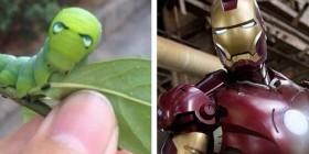 Parecidos razonables: Oruga y Iron Man