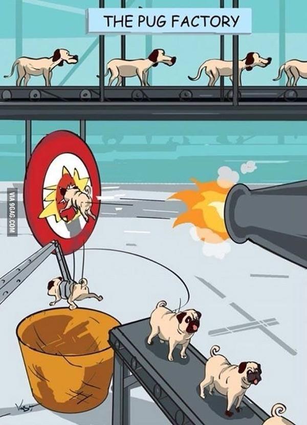 La fábrica de Pugs