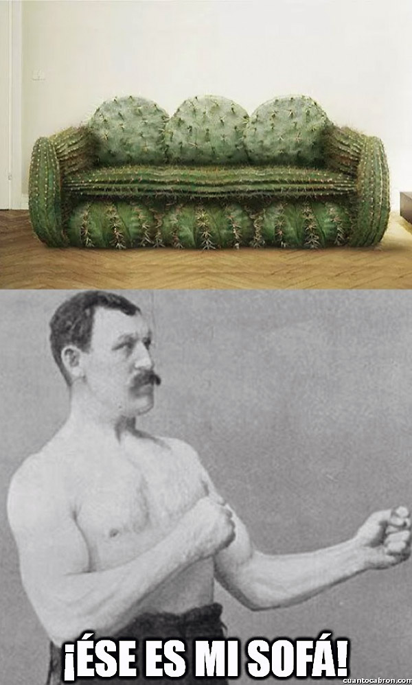El sofá de overly manly man