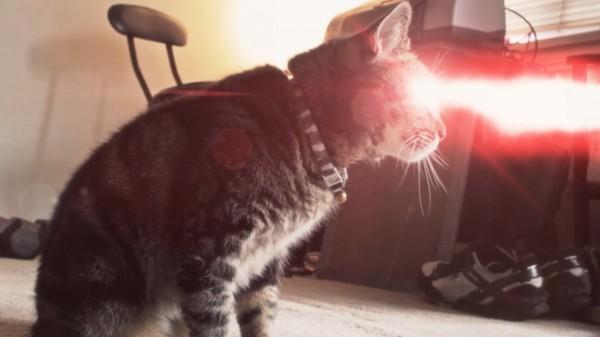 X-Men Origins: Gato Cíclope