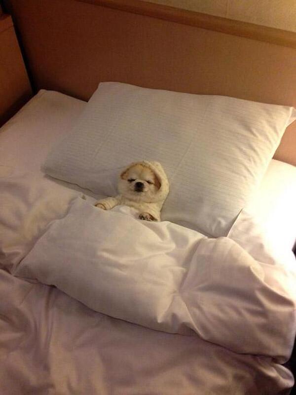 Calentito en la cama