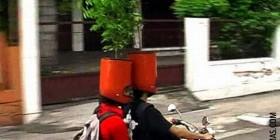 Cascos de moto maceta