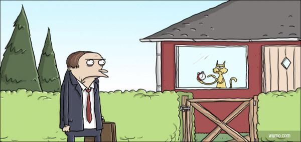 Gato controlando al dueño