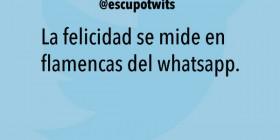 La felicidad se mide en flamencas del whatsapp