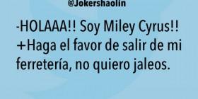 Miley Cyrus, salga de mi ferretería