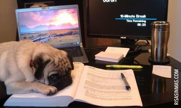 Noche de estudio