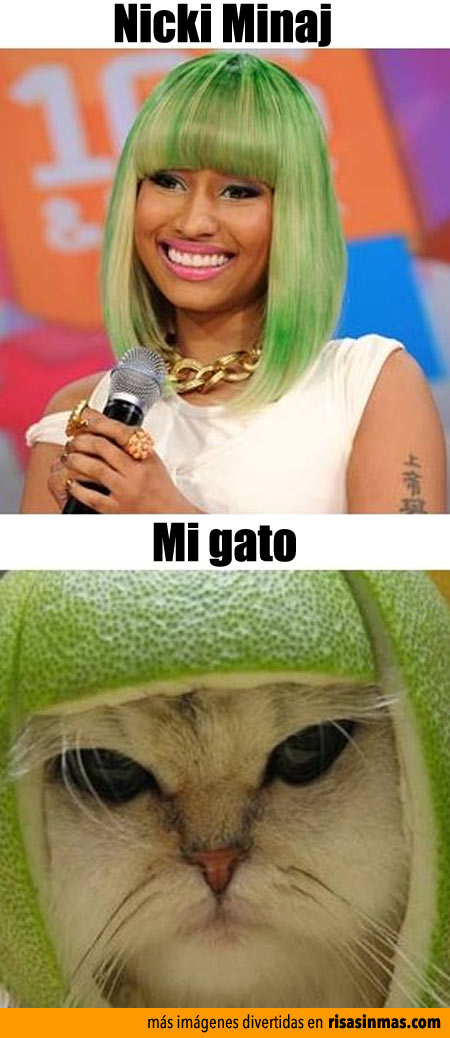 Parecidos razonables: Nicki Minaj
