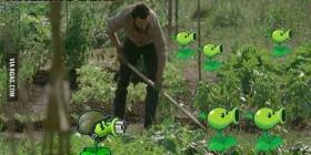 Plantando plantas en Walking Dead