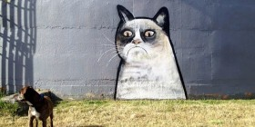 Street art de Grumpy cat