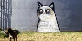 Street art de Grumpy cat