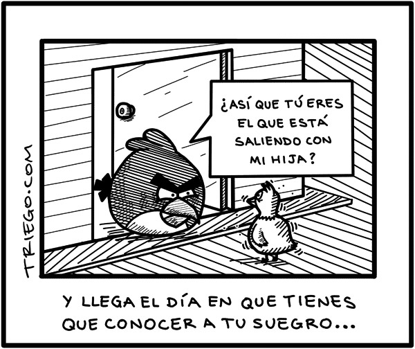 Suegro Angry Birds