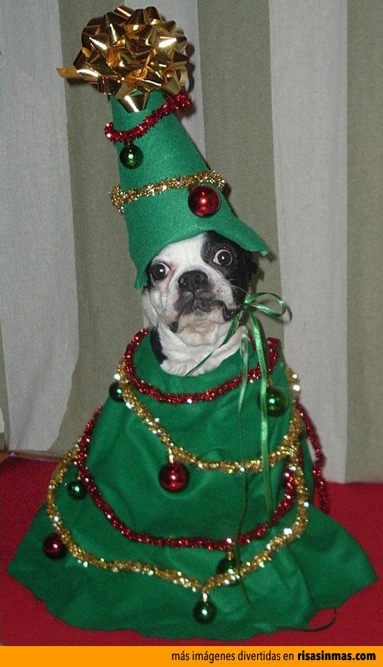 Tengo ganas que termine la Navidad
