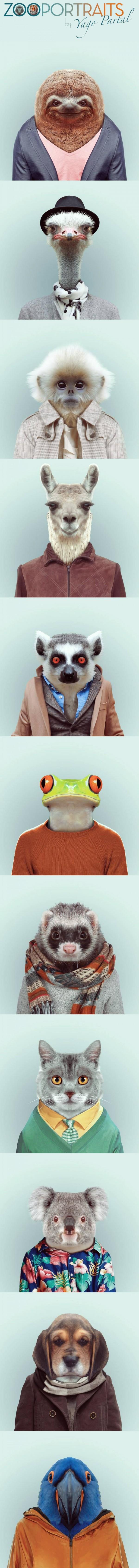 Zoo portraits por Yago Partal