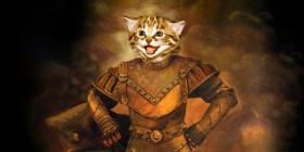 Así se ve tu gatito