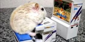 El mejor ratón a los videojuegos