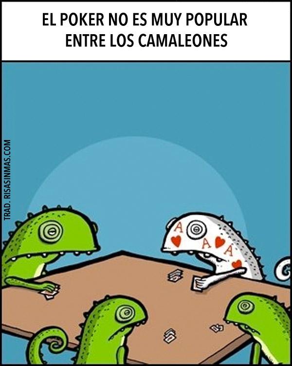 El poker y los camaleones
