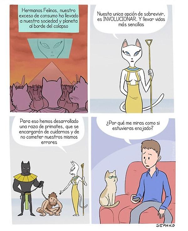 La involución de los felinos