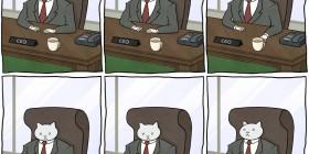 Las aventuras de un gato de negocios