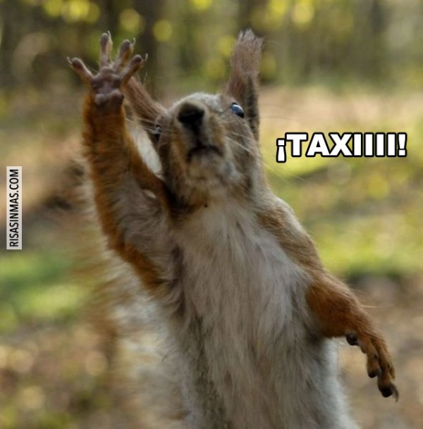 Llamando a un taxi