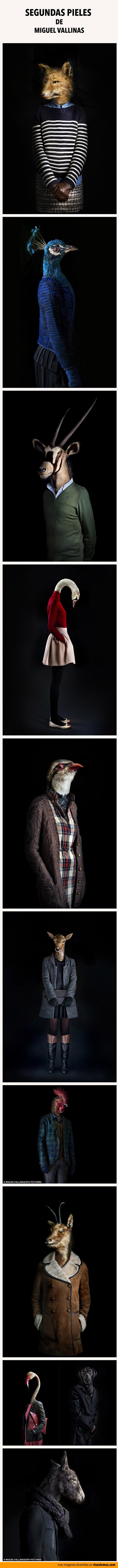 Los animales vestidos de Miguel Vallinas