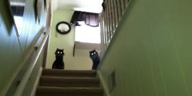 Me da miedo subir al piso de arriba
