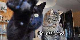 ¡No más fotos!