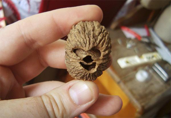 Nuez Chewbacca