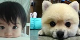 Parecidos razonables: Bebé y perrito