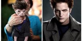 Parecidos razonables: Edward Cullen