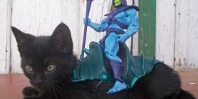 Skeletor en su nueva montura