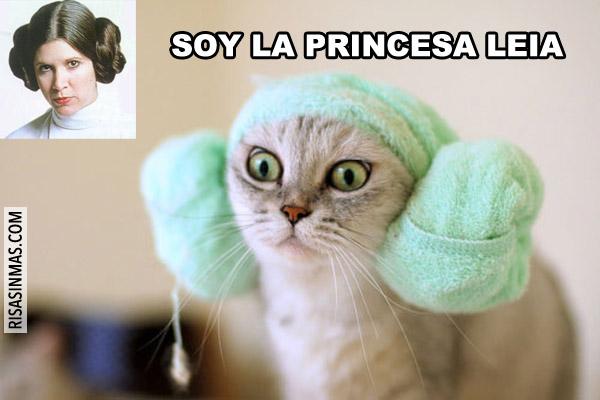 Soy la Princesa Leia