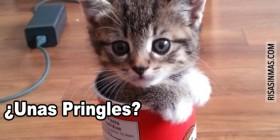 ¿Unas Pringles?