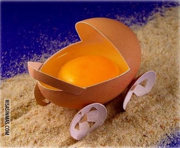 Bebé huevo