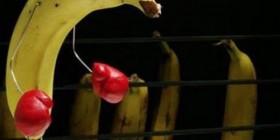 Por qué se ponen los plátanos negros