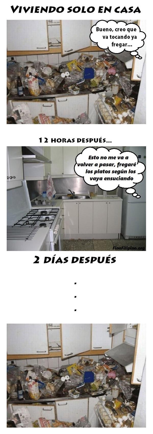 Viviendo solo en casa