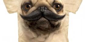 Camiseta Pug con bigote