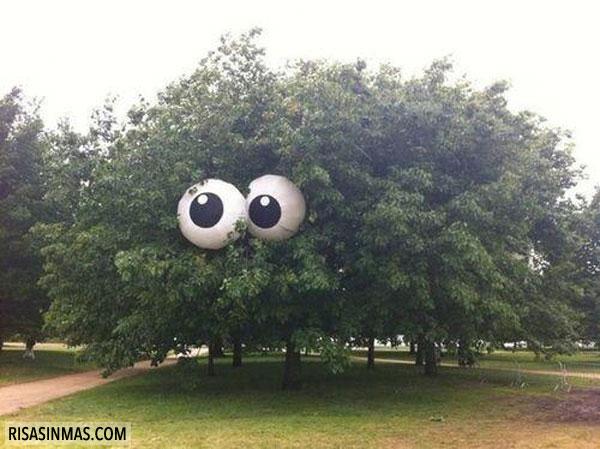El árbol mutante