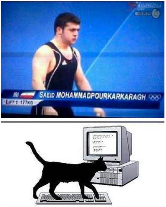 El gato que ponía nombres
