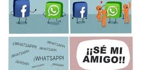 Eres un novato WhatsApp