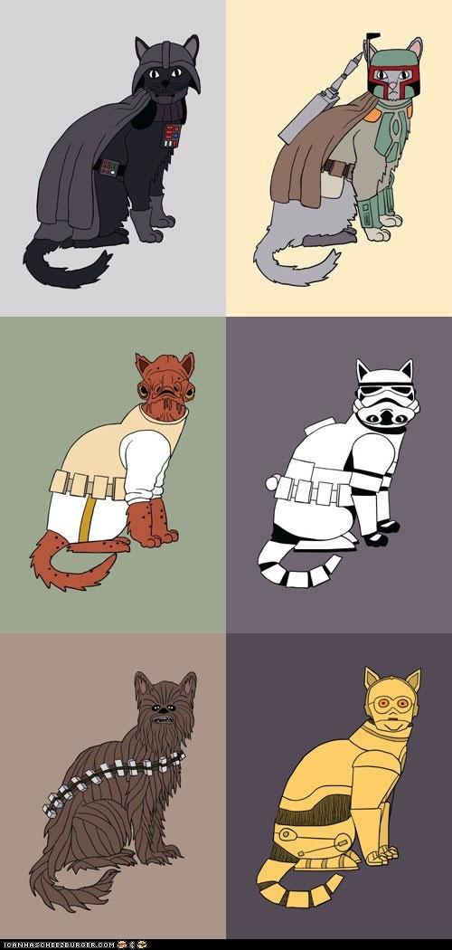 Gatos como personajes de Star Wars