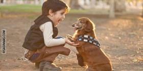 Han Solo y Chewbacca