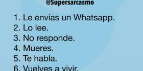 Le envías un Whatsapp